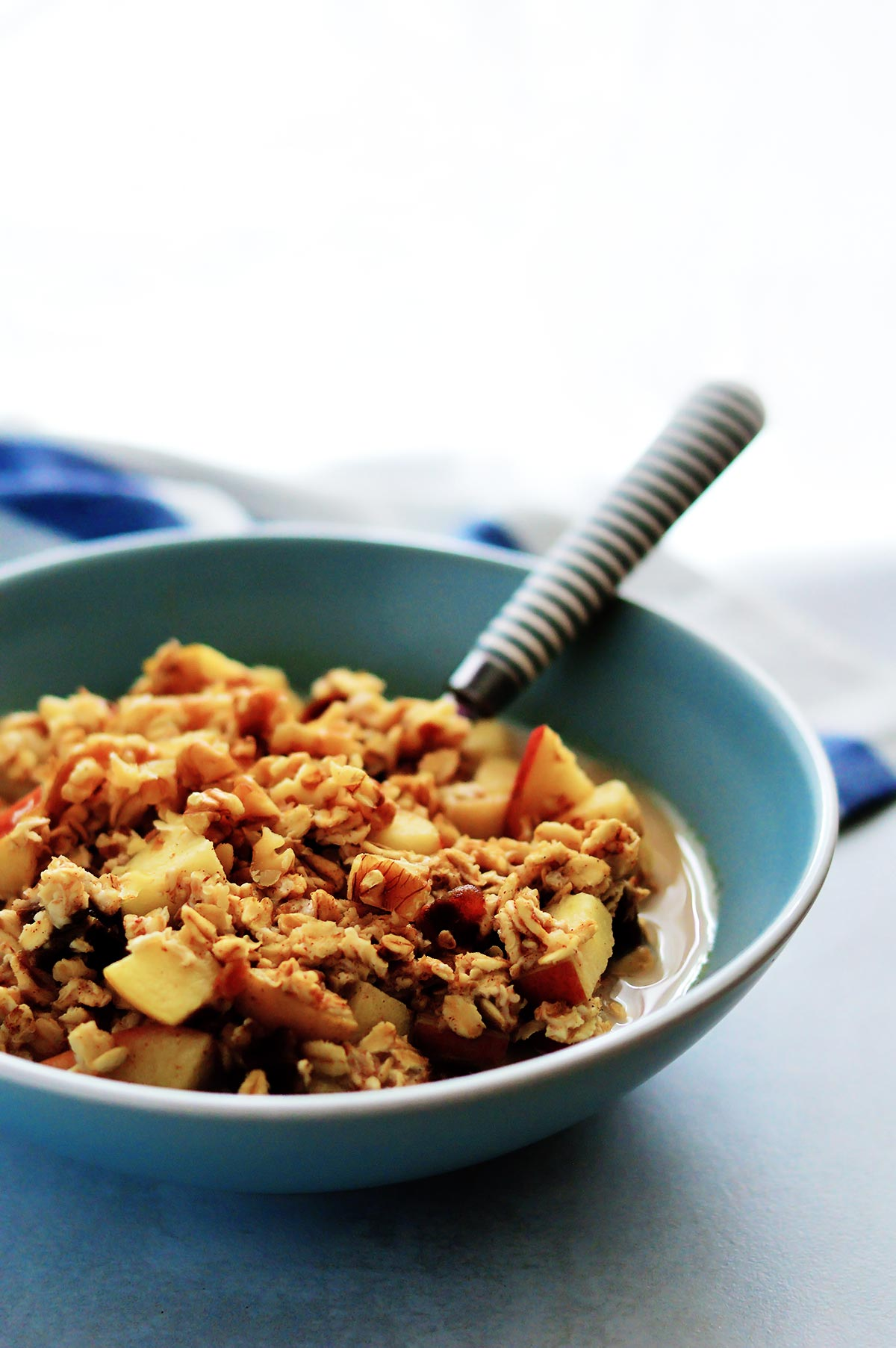 apples and cinnamon porridge bowl