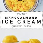 Mango Almond Ice Cream in a while bowl